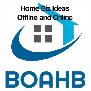 home biz ideas offline and online